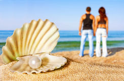 Seashell with pearl on the beach Stock Photography