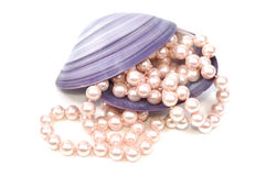 Seashell and pearls Royalty Free Stock Images