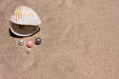 Seashell And Pearls Royalty Free Stock Photography