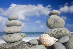 Seashell pela costa Imagens de Stock Royalty Free