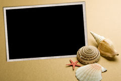 Seashell photo frame Stock Photography
