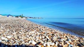 Seashell plaża, tło zdjęcie stock