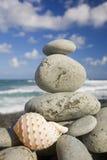 Seashell por la orilla Fotografía de archivo libre de regalías
