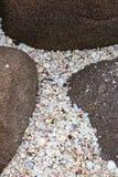 Seashell between the rocks Stock Photos