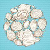 Seashell round design element Royalty Free Stock Photography