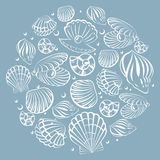 Seashell round design element Royalty Free Stock Photography
