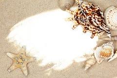 Seashell on sand beach frame royalty free stock image