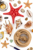 Seashell and sea concept on white Stock Photography