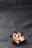 Seashell sea shell on old black leather background Royalty Free Stock Photography