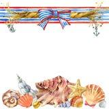 Seashell and sea ship rope Royalty Free Stock Photo