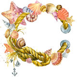 Seashell and sea ship rope. Background, watercolor illustration background Stock Photo