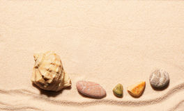Seashell and sea stones on sand. Summer beach background Stock Images