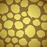 Seashell seamless pattern Stock Images