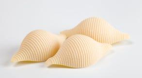 Seashell shaped pasta Royalty Free Stock Image