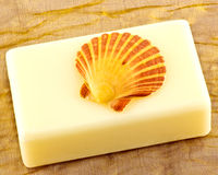 Seashell and soap Stock Image