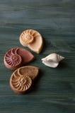 Seashell and soap shallow dof Royalty Free Stock Photography
