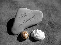Seashell Stone Life's a Beach. Black and white with color image of rocks and seashells on the beach.  Life's a Beach digitally engraved on rock Stock Photography
