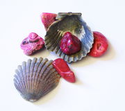 Seashell and Stones. Sea shell with colorful stones Stock Images