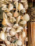 Seashell  string curtain. In tropical resort Royalty Free Stock Images