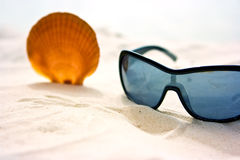 Seashell and sunglasses Royalty Free Stock Photos