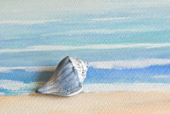 Seashell sur l'aquarelle Photo libre de droits