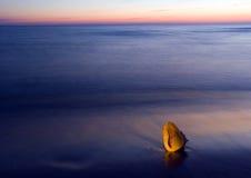 Seashell sur la plage image stock