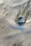 Seashell in surf Stock Images