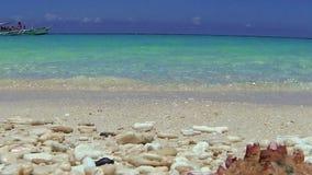 Seashell on tropical beach, Boracay. Philippines stock footage