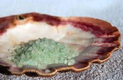 Seashell und Badesalz Stockfotografie