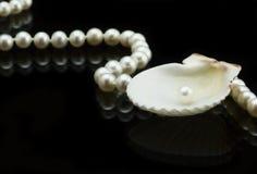 Seashell und Perle Stockfotografie