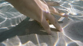 Seashell under water. Seashell lies under the water on the white sand in the clear water of a tropical sea.Human hand taking seashells lying on the sea sand stock video footage
