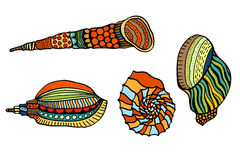 Seashell. Vector illustration. Royalty Free Stock Images