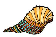 Seashell. Vector illustration. Stock Photography
