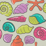 Seashell vector seamless pattern Stock Images