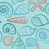 Seashell vector seamless pattern Royalty Free Stock Images