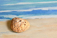 Seashell on Watercolor Royalty Free Stock Photos