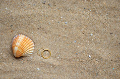Seashell and wedding rings on the sand. Seashell and two wedding rings on a background of sand on an ocean beach Stock Photos
