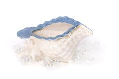 Seashell y burbujas en estudio Imagen de archivo
