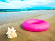 Seashell y tubo foto de archivo