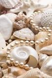 Seashellhintergrund mit Perlen Lizenzfreie Stockfotos