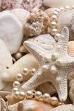 Seashellhintergrund mit Perlen Stockbild