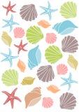 Seashellmuster Lizenzfreies Stockbild