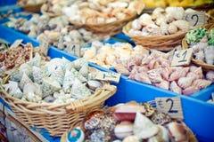 Seashells à vendre photo stock