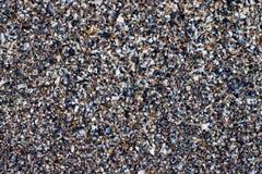 Seashells écrasés photographie stock libre de droits