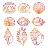 Seashells Иллюстрация вектора красочного seashell плана установленная Стоковое Изображение RF