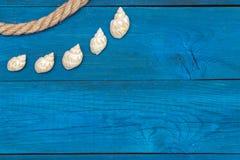 Seashells и веревочка на голубых досках, copyspace Стоковое Изображение