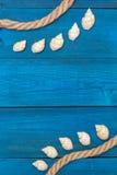 Seashells и веревочка на голубых досках, copyspace Стоковое Фото