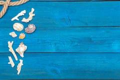 Seashells и веревочка на голубых досках, copyspace Стоковые Изображения