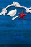 Seashells и веревочка на голубых досках, copyspace Стоковые Фотографии RF