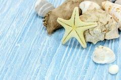Seashells, камешек и морские звёзды на голубой деревянной предпосылке планок Стоковое Фото